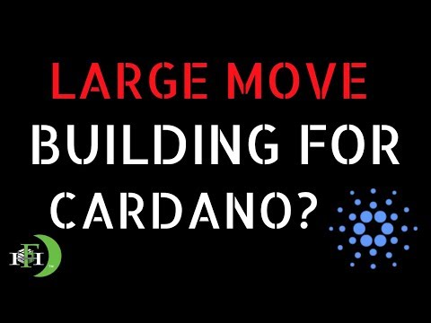 CARDANO ADA LARGE MOVE BUILDING?  (A GOOD SIGN?)