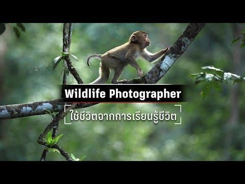 Canon EOS R กับการถ่ายภาพ Wildlife   ก้อง-บารมี เต็มบุญเกียรติ