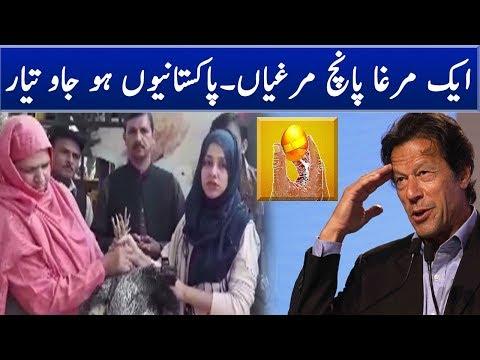 Imran Khan Egg Scheme Is in the Air | Neo News