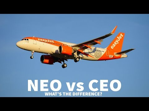 NEO vs CEO | What's the Difference?