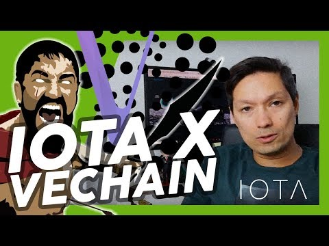 DUAS MOEDAS BILIONÁRIAS: IOTA X VECHAIN #bitcoin #investimentos