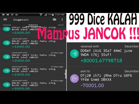 999 dice betset C29. Main 2 menit dapet 5K doge. [konsorium gatot] #extreme,jangantiruadeganini