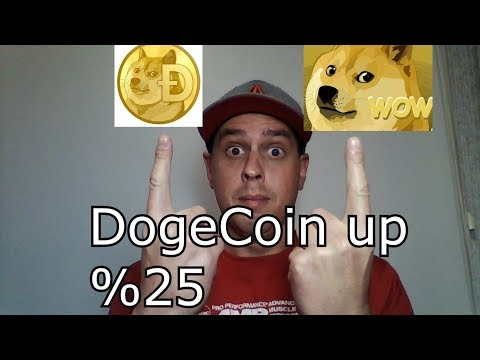 Dogecoin up %25 in one day