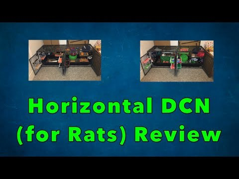 Reviewing my Rats Horizontal DCN 2 Months Later!