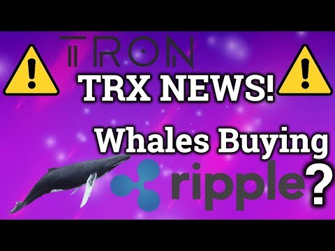 Whales Buying Ripple XRP?! HUGE Tron TRX News?! Bitcoin BTC Price, Trading, Cryptocurrency News 2019