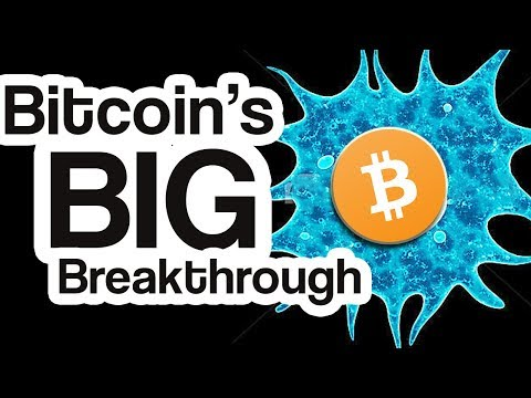 Why This Amoeba Will Change Bitcoin & CryptoCurrency Forever!
