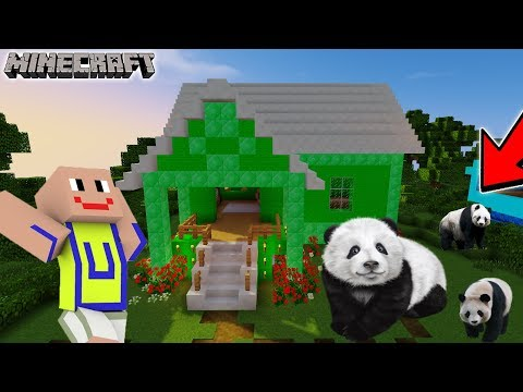 Upiiiin Senang! Ada Panda Lucu Di Kampung Durian Runtuh