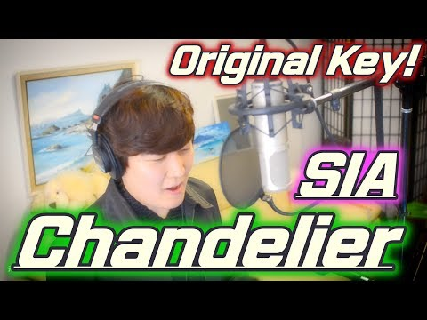 Chandelier – SIA [Original Key Male Ver.] Cover by Shout King!