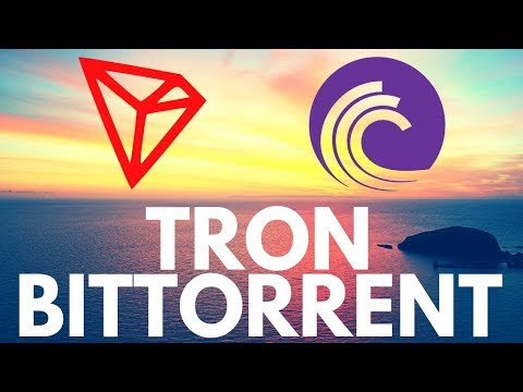 Bittorrent Token and Tron – Everything you need to know about BTT and TRX