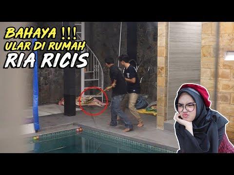 PRANK ADA ULAR MASUK KERUMAH RIA RICIS !!!