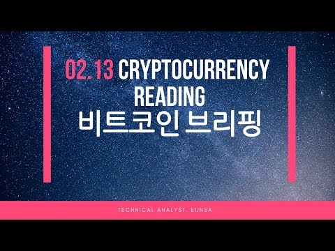 [02.13/비트코인] Cryptocurrency Reading / Bitcoin 시황브리핑