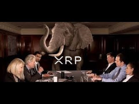 Elon Musk And The Ripple XRP Elephant In The Room