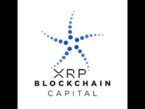 Ripple And XRP : Something Just Does Not Add Up