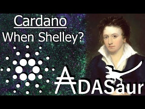 Cardano: When Shelley? All you need to know.