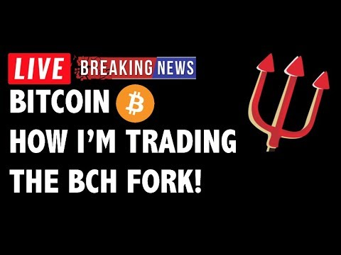 How I'm Trading the Bitcoin Cash (BCH/BTC) Fork! – Crypto Market Analysis & Cryptocurrency News