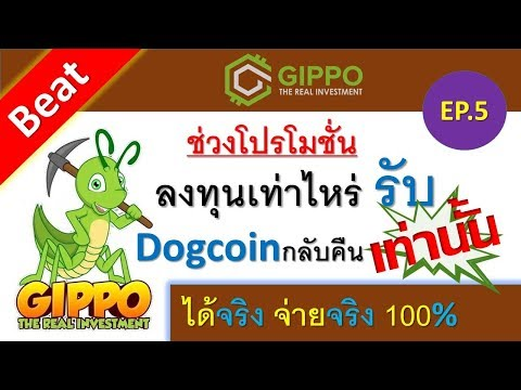 Gippominers ช่วงโปรโมชั่น ลงทุนเท่าไรรับ Dogecoin กลับคืนเท่านั้น ลง 1000 รับ 1000 Dogecoin