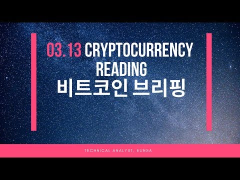 [03.13/비트코인] Cryptocurrency Reading / Bitcoin 시황브리핑