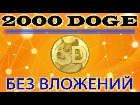 2000 DOGE – БЕЗ ВЛОЖЕНИЙ каждую неделю!