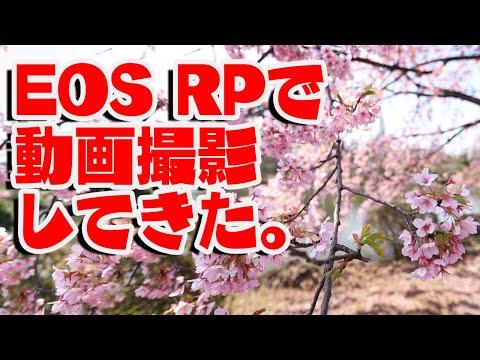 【レビュー】EOS RPで動画撮影してきた。【春・キヤノン】