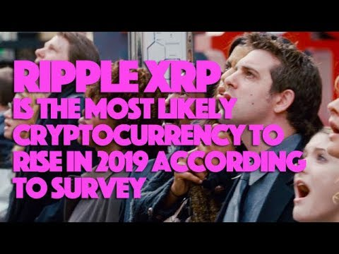 Ripple XRP Is The Most Likely Cryptocurrency To Rise In 2019 According To Survey