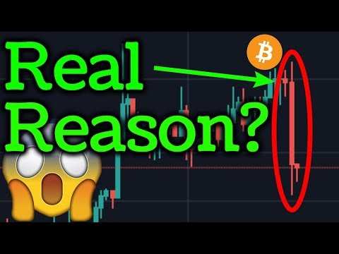 Real Reason Bitcoin Suddenly Dropped? Cardano ADA News! BTC Bitmex Trading + Cryptocurrency Analysis