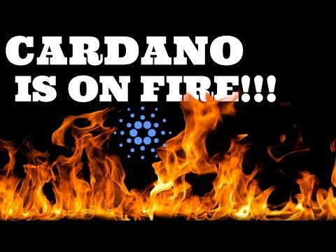 CARDANO IS ON FIRE!!! (HOW HIGH WILL PRICE GO?)