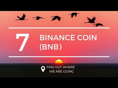$17 Binance Coin BNB Price Prediction (1 Apr 2019)