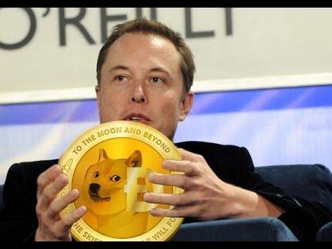 Elon Musk New CEO Of Dogecoin? – Latest Elon Musk News and Video 2019