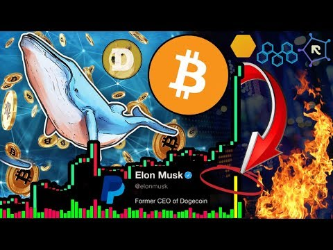 Bitcoin Whale Pumping Prices!!! 20,000 $BTC Order! 40% MORE Gains to Go?!? Resistance DEX