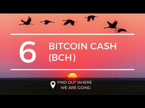 $170 Bitcoin Cash BCH Price Prediction (1 Apr 2019)