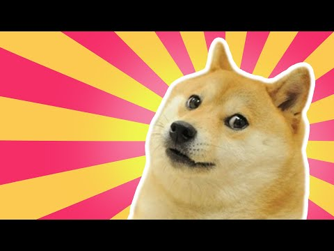ENDLESS DOGE