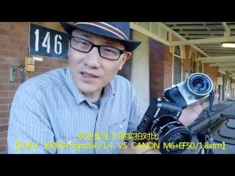 【Canon EOS M6 & SONY a6000】佳能索尼全都要