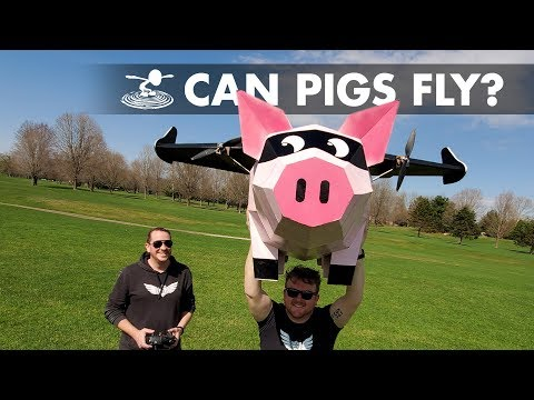 When (RC) pigs FLY…. 🐷