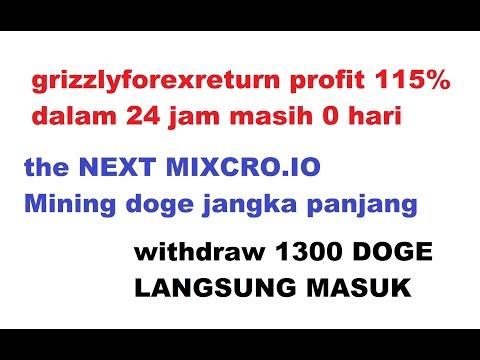 WITHDRAW 1300 DOGE DALAM SEMENIT [ INVES MASIH FRESH USIA 0 HARI PROFIT 115% PERDAILY ]