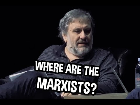 "Zizek vs Peterson on ""Postmodern Neo-Marxism"" (Highlight)"