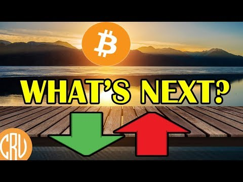Bitcoin Holds Strong While Altcoins Dip – What's Next? | Bitcoin and Cryptocurrency News