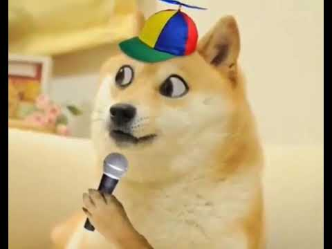 Elmo Freestyle (Doge rap)