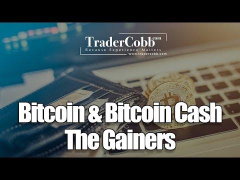 Bitcoin & Bitcoin Cash The Gainers