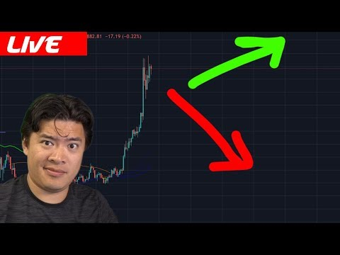 Bitcoin Bulls on Rampage / What's next for Crypto