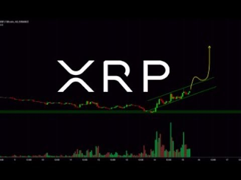Keiser:  Bitcoin 100K In 2019 And Ripple / XRP Poised To Change The World