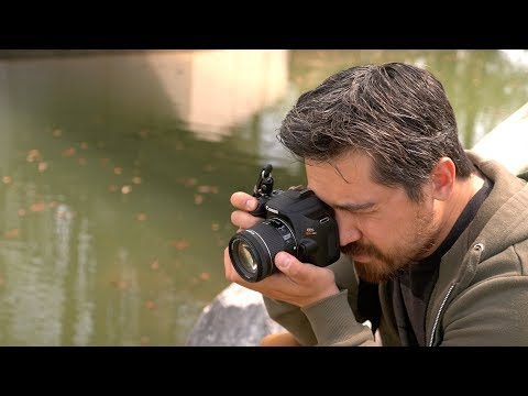 Canon EOS Rebel SL3 / 250D Review