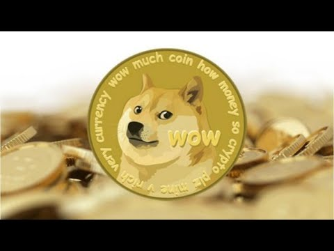 Dogecoin Ready To Skyrocket by Hitting $1 Before The End Of 2019 – Elon Musk Dogecoin – TheOofy.com