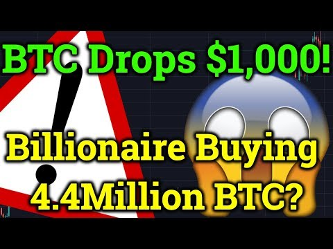 Bitcoin $1,000 DUMP! Billionaire Whale Buying 25% of ALL BTC?! (Cryptocurrency News + Analysis)
