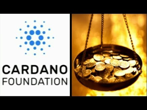 Cardano Rises Proof Blockchain Will Be The Future Positive Signs For ADA