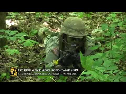 Situational Training Exercises (STX) | 1st Regiment, Advanced Camp 2019
