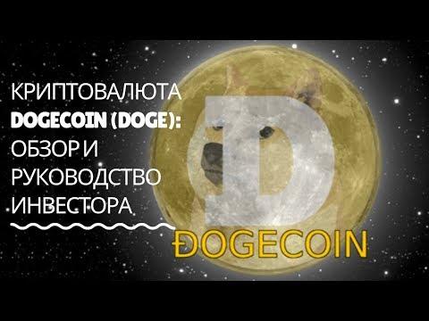 Криптовалюта Dogecoin (DOGE): обзор и руководство инвестора