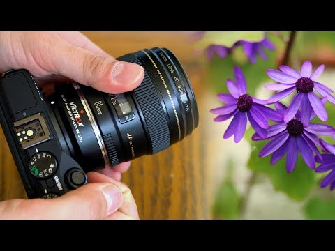 'Full-frame' images on Canon EOS M? Viltrox EF-EOS M2 0.71x Adaptor review