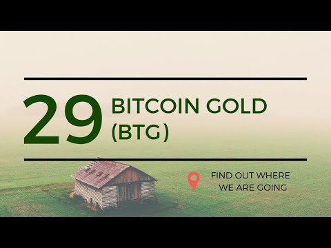 $26 Bitcoin Gold BTG Price Prediction (19 June 2019)