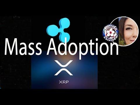 Mass Adoption of Ripplenet & XRP, New Video David Schwartz, InstaRem, Sendfriend, Beetech
