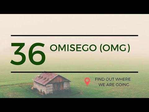 $2 OmiseGo OMG Price Prediction (20 June 2019)